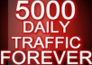 Guarantee at Least 5000 Daily Real Adsense Safe Traffic Everyday