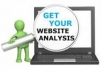 do complete auditing of your site and give you detail report