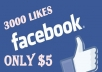 provide 3000+ Superfast Facebook Page likes