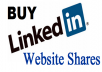 give 100+ Linkedin Shares for your website