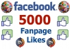 add 5,000 Real Facebook Likes to your Facebook Page