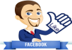 give 4000 Real facebook Post,Photo likes or 3000 to 4000 followers