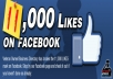 add 10000 Facebook Fan Page Likes To Improve your Social media Signals and SEO