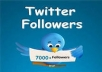provide  7000+ real twitter followers