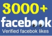 provide 3000 Real Facebook Likes in 12 hrs