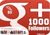 give you 1000 google plus circle or followers