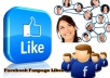 give 2000 Facebook Fanpage likes or Twitter Followers