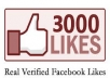 Give You 3,000+ Facebooke Fanpage likes