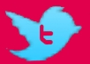 teach you Step by step guide showing How to monetize twitter to Generate Auto