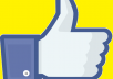 give 4000++ permanent facebook like photo or comment or posts only