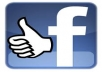 add 300 FACEBOOK Likes genuine High Quality To Facebook Fanpage