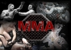Tweet Your Message to Over 11,000 Active MMA Fans