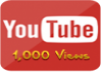 provide 1,000 youtube views