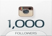 give 1000+ quality Instagram followers