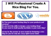 Create A Professional Nice Looking Blog For You