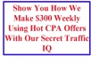 show You How We Make 300usd Weekly Using Hot CPA Offers With Our Secret Traffic