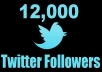 add 15000 Real Twitter Followers To Your Account