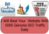 Blast Your  Website With 5000 Genuine SEO Traffic Daily
