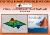 do MATLAB Programming works