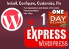 install,configure and fix WordPress for you