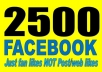Provide You 2500 Real/Human/Unique/Active Fb Likes For Your page 100% Safely.