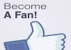 add 4000+ High Quality PERMANENT FACEBOOK LIKES to your FAN PAGE within 48 hours