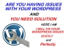 Fix any wordpress Issues or problem or error