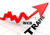 SHOW you How to Get 5524 Visitors In 12 hrs