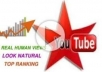 give 2000 youtube views or 100 subscriber or (10 comments,10 likes,10 subscribe) in just