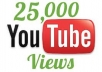 give you 25,000 youtube views with very fast delivery