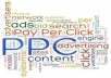 set and promote 20 PPC keywords