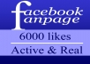 add 6000 facebook likes, REAL facebook likes in 24hrs