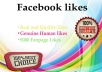 provide you 2000+ Facebook page or post likes or Profile Followers within few hours Real People
