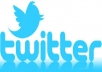 Add Real and active 30,000+ Twitter followers