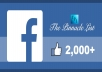 give you 2000+ facebook fan page Likes