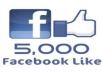 add 5000 genuine Top Quality facebook fanpage likes