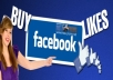 give you real 2000 facebook likes and 7000 website permanent likes