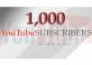 add 1000 youtube subscribers to your Channel or Video