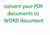 convert your pdf document to ms word document