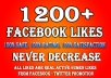 give 1,200+ Facebook Fanpage likes or Fans Within 48 hours