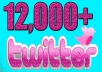 give you 12,000+Super Fast Twitter Real Followers