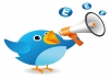 give you 6,000+Super Fast Twitter Real Followers