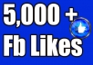 give you 5,000+Instantly started PERMANENT Active Facebook likes
