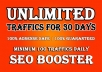 deliver Google Search Traffic for 2 Months