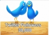 provide you people high class 30000 twitter followers