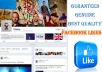give Genuine High Quality 2000 Facebook Fanpage likes