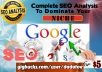 Create Complete SEO Analysis of your Website for Ranking