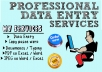 do data entry, copy and paste from websites or PDF to Excel or word