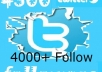 Provide You With 4000+ twitter followers
