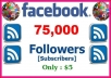 Provide 75,000 Facebook Profile Followers Just